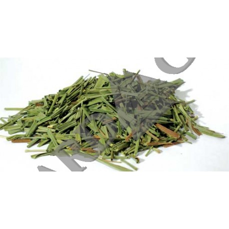 Lemongrass Dried Ritual Herb