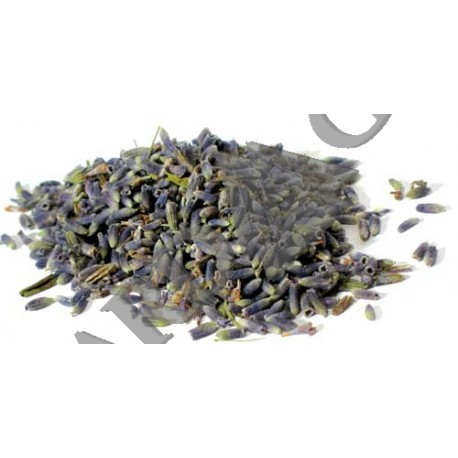 Lavender Dried Ritual Herb