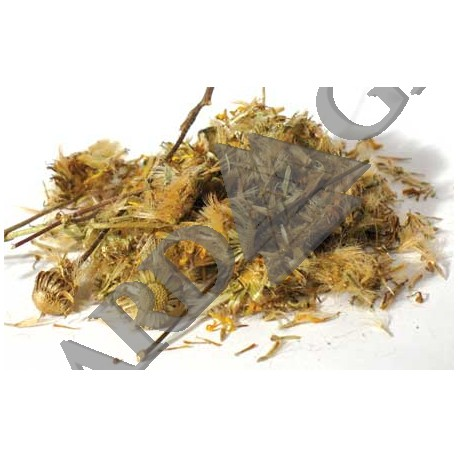 Arnica Dried Ritual Herb