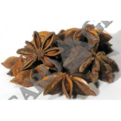 Anise Star Dried Ritual Herb