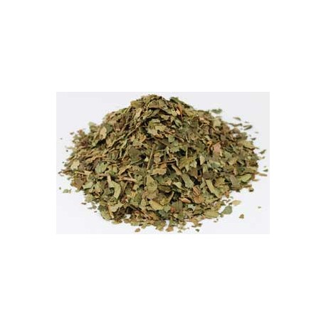 Witch Hazel Dried Ritual Herb