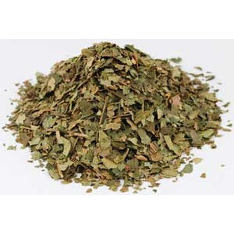 Witch Hazel Dried Ritual Herb