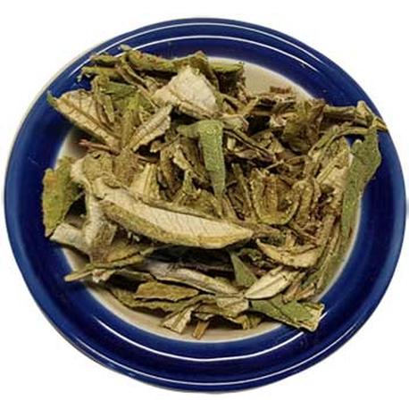 Yerba Santa Dried Ritual Herb