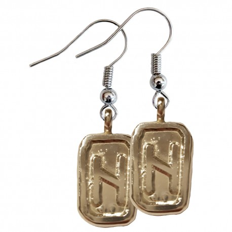 Hagalaz Earrings