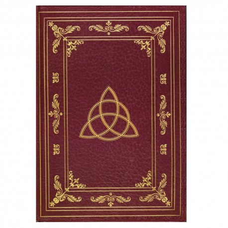 Golden triquetra journal front cover details.