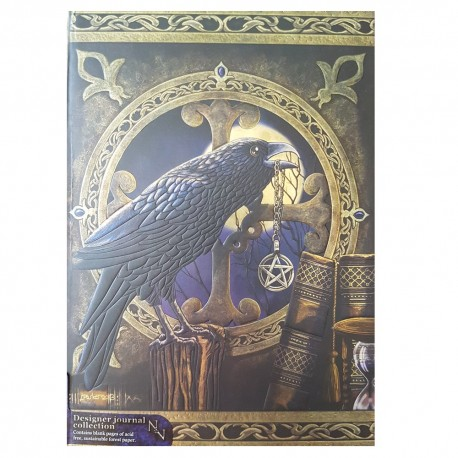 A single raven sits on a bookshelf in front of a round window on the cover of this journal.