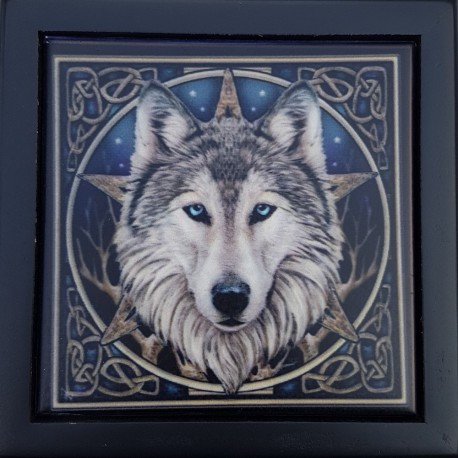 The wolf box feature the Wild One wolf image by Lisa Parker.